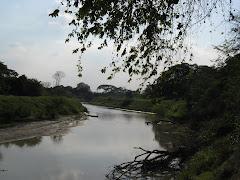 Rios de Portuguesa