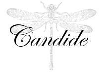AvA Candide