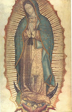 Our Lady of Guadelupe, Protectress of the unborn, pray for us!