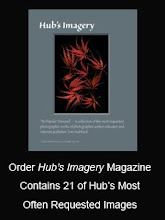 Hub's Imagery Catalog Now Available