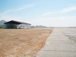 At a lonely airstrip, there are more cattle than planes