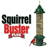 ARE SQUIRRELS MONOPOLIZING YOUR BIRD FEEDERS?
