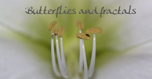 Butterflies and fractals...