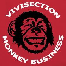 monkey busssiness