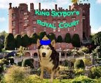 King SkyBoy appoints new Royal Court member:  Sir Jack, Knight of New England's coast