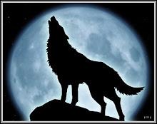 La Luna y el can, anteds el lobo ahora el perro