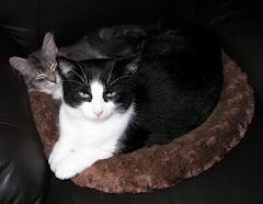 George & Fifi