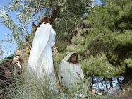 3. Gesù nell'orto di Getsemani