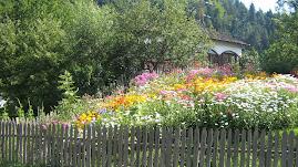 Un peisaj românesc