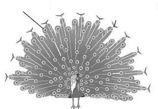 மந்திர வார்த்தைகள் உடலை துளைக்கட்டும் Ujiladevi.blogpost.com+%252820%2529
