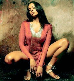 sameera-reddy-hot-wallpapers8.jpg (293×320)