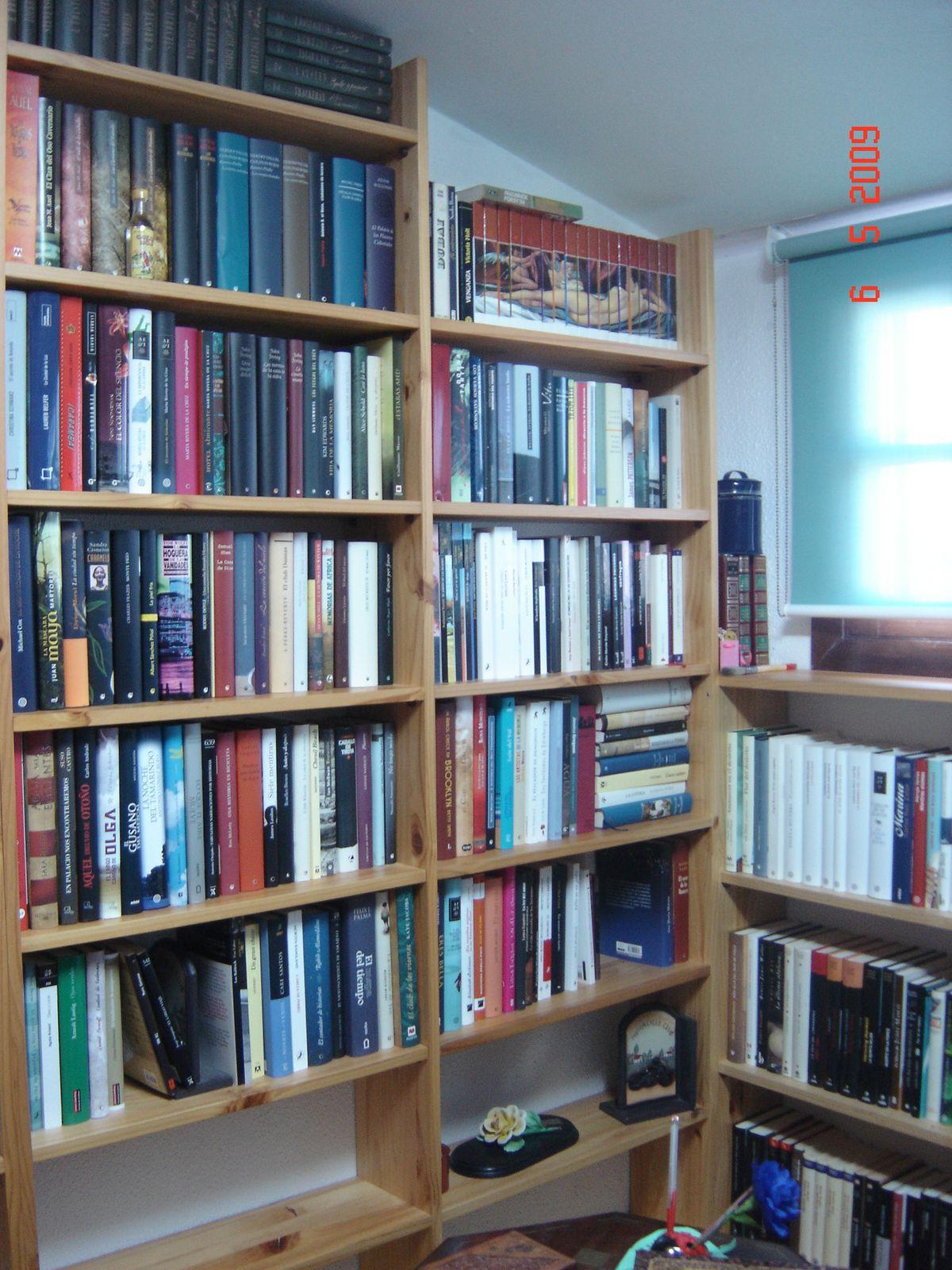 Bit cora de mis lecturas mis estanterias - Estanteria biblioteca infantil ...