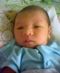 Anas_newborn