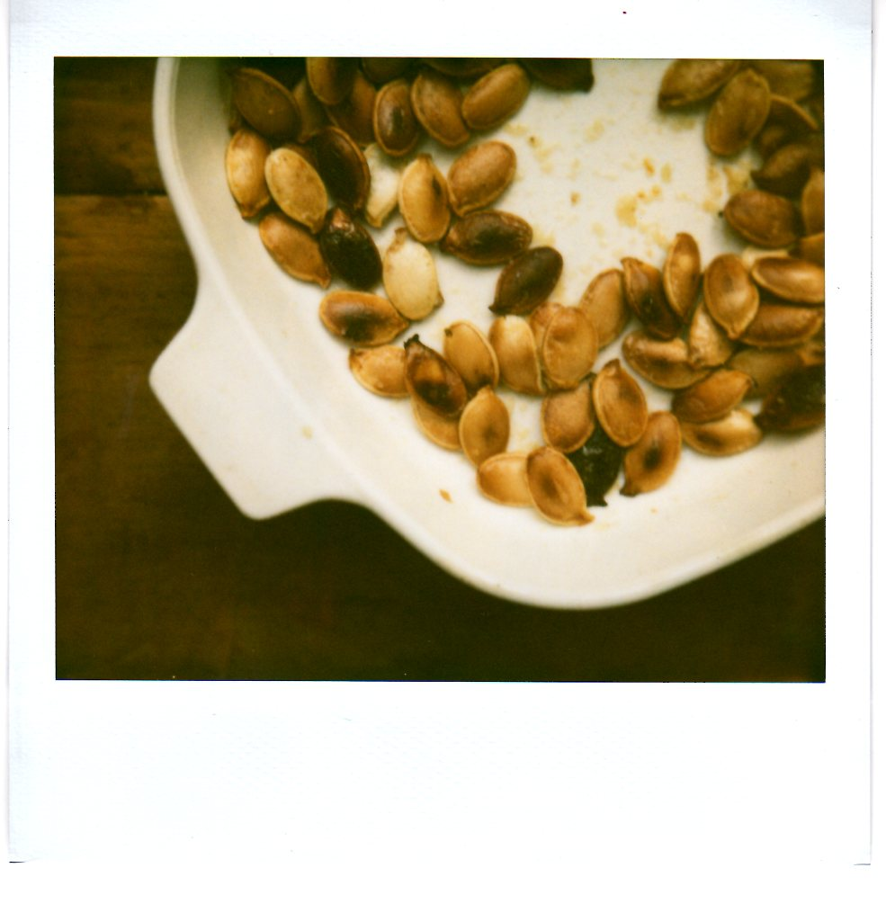 Diary of a Locavore: November 2010