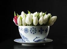 Tulipani (bello il film Pane e tulipani l'avete visto?)