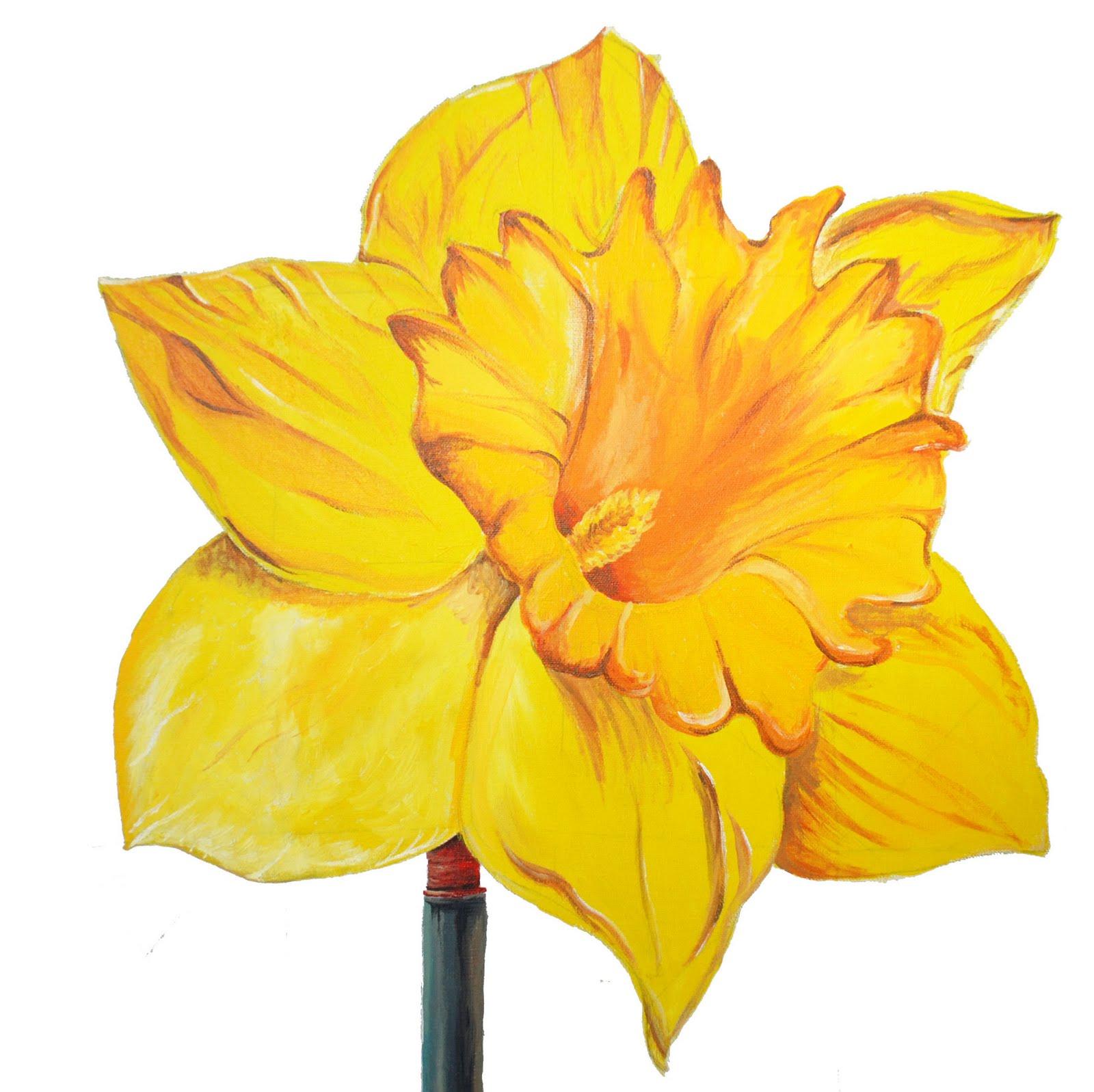 [daffodil2]