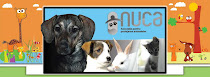 Membru Asociatia pentru protectia animalelor NUCA Cluj-Napoca