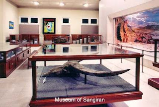Archeological sangiran museum inside human ancient