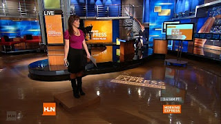 robin meade boots