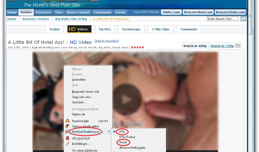 FlashGot  best Firefox download manager integration