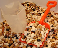 Mixed Dried Beans with Cup and Shovel