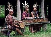 The Dayak Kalimantan Musician