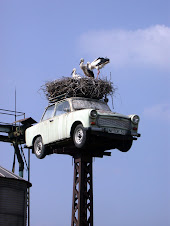 After the collapse of communism Trabi is used as a nest