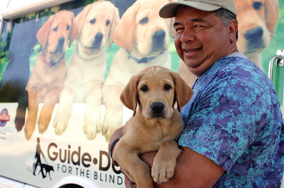 Puppy Truck driver Joe holds a yellow Lab puppy