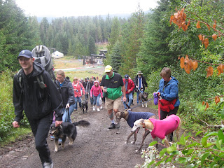Walkers with their dogs on the trail at the Dog Day event