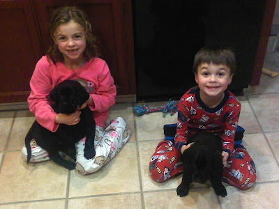 The Wales children each hold a black Lab puppy their family is providing foster care for