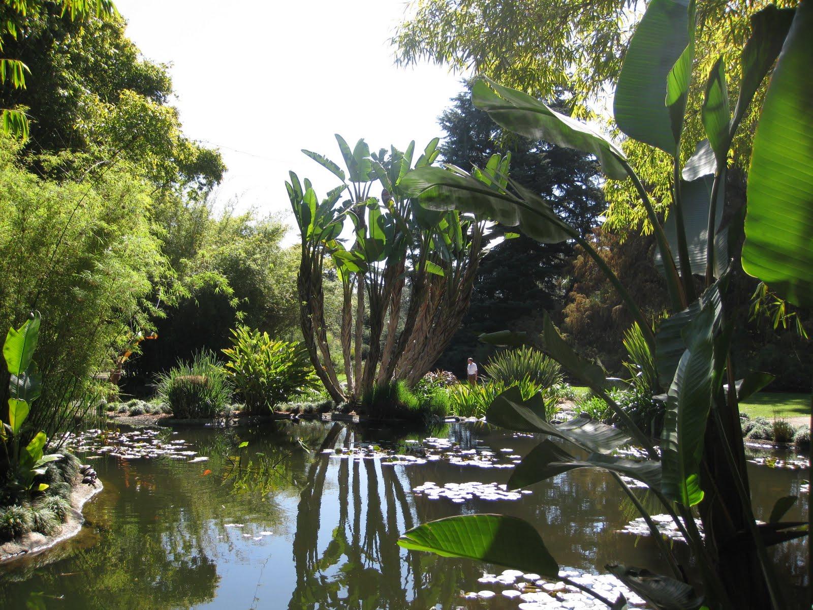 Pasadena Huntington Gardens