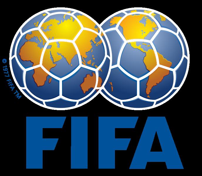England World Cup 2018 bid logo. I think it's great,