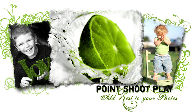 Point.Shoot.Play
