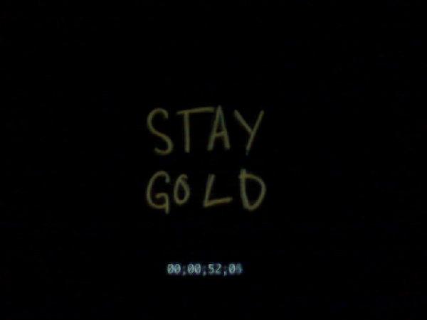 Emerica Stay Gold Wallpaper