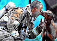 cadela agradece ao bombeiro que a salvou das chamas