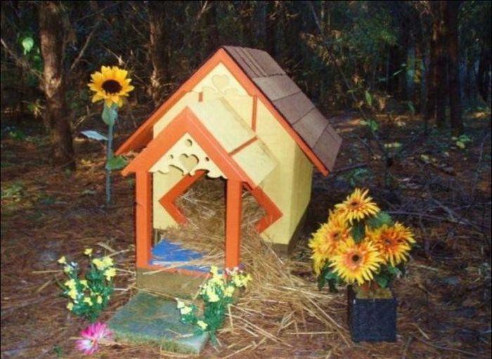 http://2.bp.blogspot.com/_mmBw3uzPnJI/S-RK6-0AErI/AAAAAAABO0A/20n7QyY91eM/s1600/homeless_cats_26.jpg