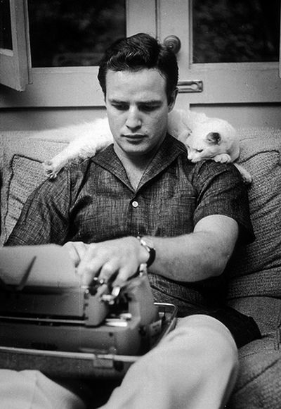 [Celebrities_and_their_cats_02.jpg]