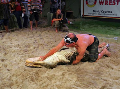 play,kiss,fight alligator