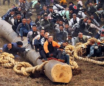 مهرجان الاشجار فى اليابان