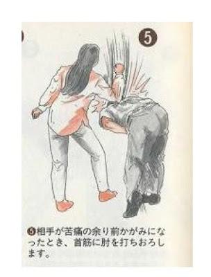 japan 04 Weird Japanese Self Defense