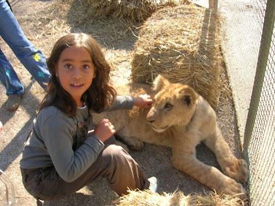 Kebun Binatang Paling Berbahaya di Dunia - Lujan Zoo27