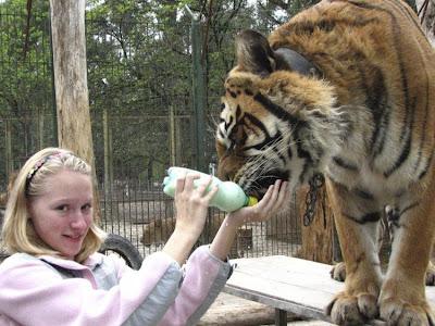 Kebun Binatang Paling Berbahaya di Dunia - Lujan Zoo18