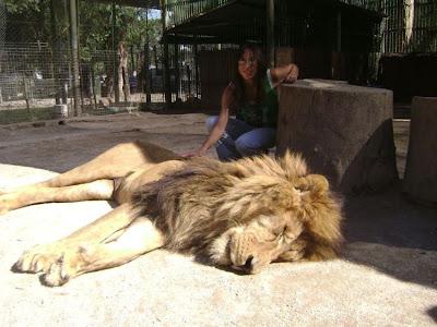 Kebun Binatang Paling Berbahaya di Dunia - Lujan Zoo14