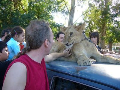 Kebun Binatang Paling Berbahaya di Dunia - Lujan Zoo11