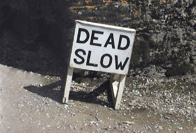 dead slow children crossing