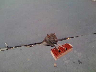photoshop mouse
