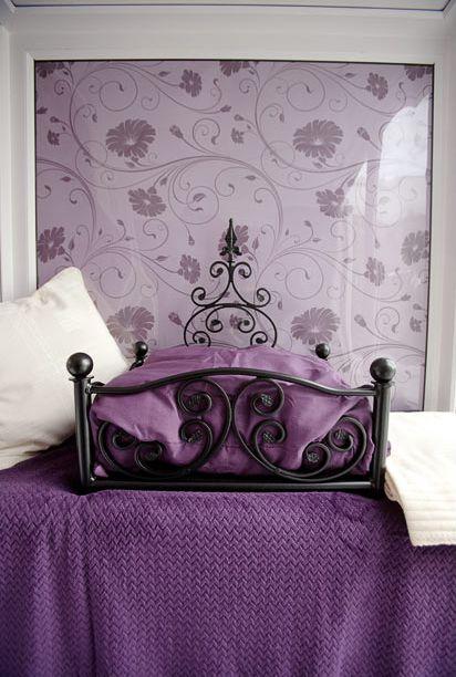 فندق خمسه نجوم للقطط luxury_cat_hotel_in_uk_12.jpg