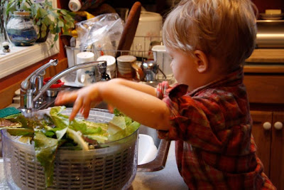 Washing salad greens for the family's dinner. (Photo from The Montessori Child at Home)