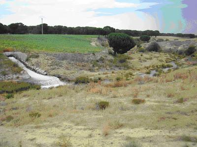 Desagüe del regadío de las Cogotas al río Arevalillo desde la balsa de Nava de Arévalo