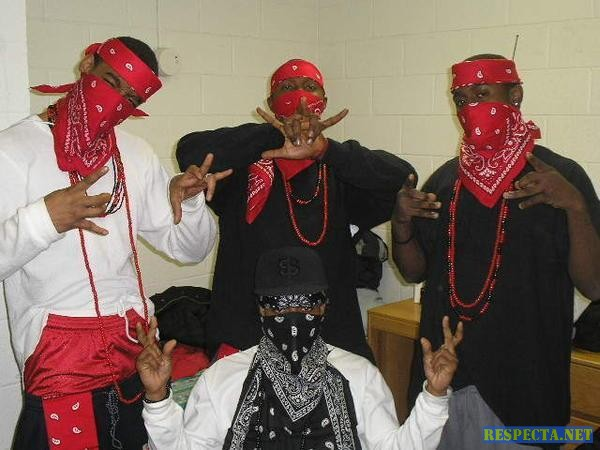 blood gang signs images pictures becuo
